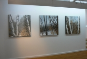 Hilary Dymond, Winter Paths, vues de l'exposition.