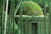 Nils-Udo, Bamboo House, 1987, 100 x 100 cm N° 3/8